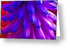 Fantasy Flower 5 Greeting Card