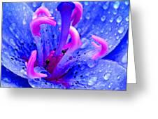 Fantasy Flower 6 Greeting Card