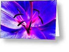 Fantasy Flower 9 Greeting Card