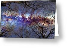Fantasy Stars Milkyway Through The Trees Greeting Card