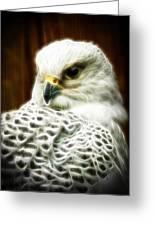 Fantasy White Falcon Greeting Card