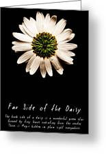 Far Side Of The Daisy Fractal Version Greeting Card