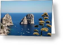 Faraglioni In Capri Greeting Card