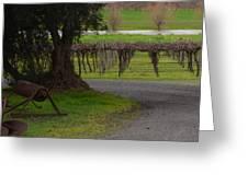 Farm And Vineyard Greeting Card