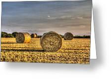 Farm Bales Greeting Card