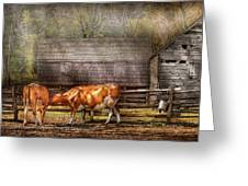 Farm - Cow - A Couple Of Cows Greeting Card by Mike Savad