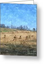 Farm Days 2 Greeting Card