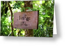Farm Eggs Greeting Card