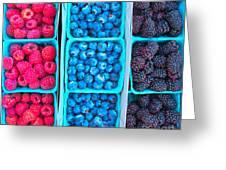 Farm Fresh Berries - Raspberries Blueberries Blackberies Greeting Card