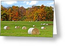 Farm Fresh Hay Greeting Card