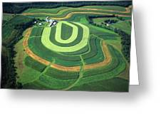 Farm Greens And Hillside Contour Plowing Greeting Card