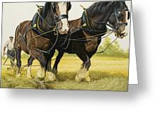 Farm Horses Greeting Card