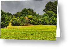 Farm Journal - Hidden History Greeting Card