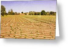 Farm Landscape Greeting Card