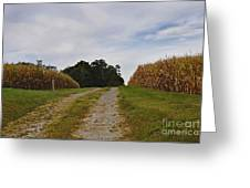 Farm Lane Greeting Card