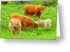 Farm - Pasture - Meadow Greeting Card