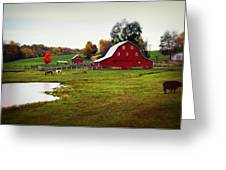 Farm Perfect Greeting Card by Marty Koch