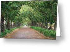 Farm Road Greeting Card