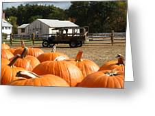 Farm Stand Pumpkins Greeting Card by Barbara McDevitt
