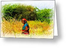 Farmers Fields Harvest India Rajasthan 2a Greeting Card