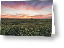 Farmland Sunset 2 Greeting Card
