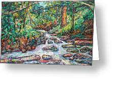 Fast Water Wildwood Park Greeting Card by Kendall Kessler