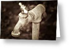 Faucet In Fall Greeting Card by Cathie Tyler