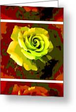 Fauvism Roses Triptych Greeting Card