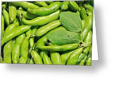 Fava Bean Pods Greeting Card