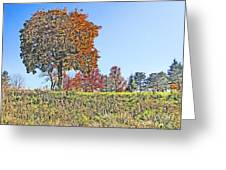 Favoring The Fall Colors Greeting Card