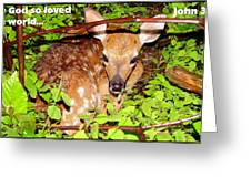 Fawn In The Forest - Inspirational - Religious Greeting Card