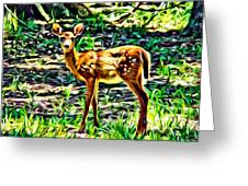 Fawn In The Woods Greeting Card