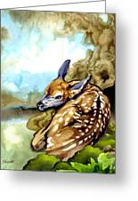 Fawn Parked In The Trees Greeting Card