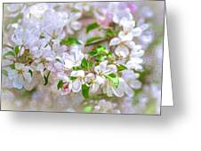 Feast Of Life 23 - Spring Wreath Greeting Card