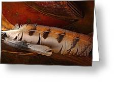 Feather And Leather Greeting Card