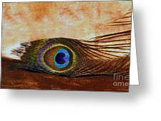 Feather Design Greeting Card