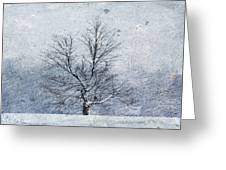 February Blizzard Greeting Card