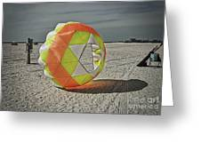 February On Tampa Bay Beach Greeting Card