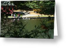 Feeding Ducks Greeting Card
