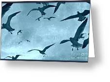 Feeding Frenzy Greeting Card