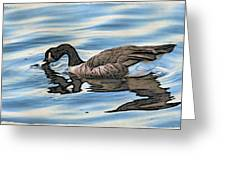 Feeding Goose Greeting Card