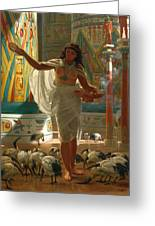 Feeding The Sacred Ibis In The Halls Of Karnac Greeting Card