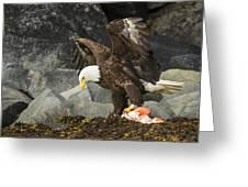 The Ultimate Bald Eagle Greeting Card