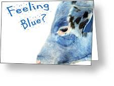 Feeling Blue Calf Greeting Card