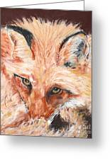 Feeling Foxy Greeting Card