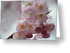 Feelings Of Flowers Greeting Card