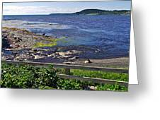 Fence Along Rocky Harbour-nl Greeting Card