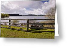 Fence At Kielder Water Greeting Card