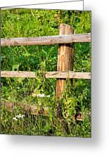 Fence Detail Greeting Card