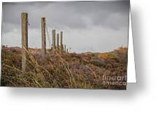 Fence In The Storm In Norway Greeting Card